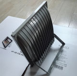 10W 20W 30W 50W COB Flood Light Project Lamp Rectangle Appearance