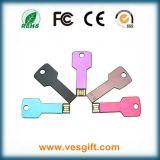 USB promotionnel de clef, clefs d'USB de logo de 2g 4G 8g