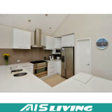 Mobília por atacado dos gabinetes de cozinha do estilo de América (AIS-K442)