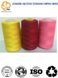 Amorçage chaud de broderie de polyester de la vente 100 avec de diverses couleurs