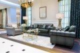 Combinação clássica intemporal do sofá da tela & do couro (BM-4)
