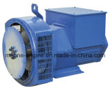 Sale를 위한 Stq Series Generator 360kw Brushless Alternator