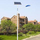 Jinshang Lumières 6m Polonais 30W Del Solar Powered Éclairage (EST-A 20156130)