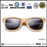Óculos de sol de madeira de bambu do modelo novo de bambu