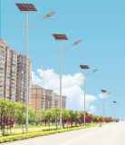 7mポーランド人42Wケニヤへの太陽LEDの街灯