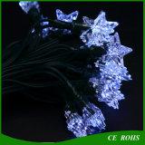 El jardín solar de la cadena LED que enciende el festival blanco de la estrella adorna la luz del partido de césped