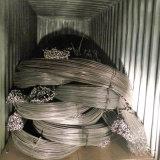 中国タンシャンの製造業者からのGr60高品質によって変形させる棒