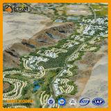Urban&Collegesの計画モデル場面モデルかプロジェクトの建物モデルまたはサウジWaaの計画モデル