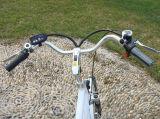 男性のための安い250W都市電気バイク