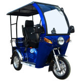 tricycle 110cc Handicapped avec la moto en verre de la roue Cover/3 (DTR-12)