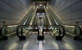 L'élévation maximum est jusqu'à 10 mètres d'escalator de la Chine