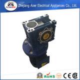 Motore elettrico mediocre di alta coppia di torsione con l'attrezzo di vite senza fine
