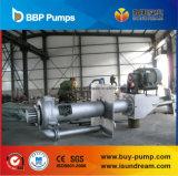 Pompa di pozzetto verticale (serie di SP/SPR)