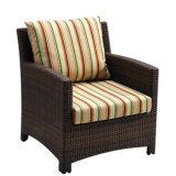 Il sofà esterno di alluminio per qualsiasi tempo della mobilia del giardino ha impostato dal doppio (YT020)