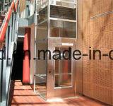 집으로 사치품에 의하여 사용되는 상승 또는 별장 엘리베이터