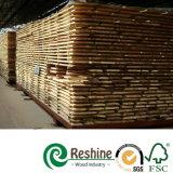 Imperméabiliser les bâtis Pré-Amorcés S4s Dar de bois de construction