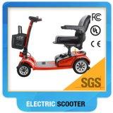"""""""trotinette"""" Handicapped da mobilidade"""