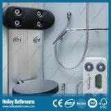 L Form-Qualitäts-Dusche-Haus mit bereiftes Glas-Tür (SR119M)