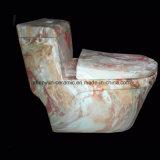 Wc de una sola pieza del color del tocador del tocador de cerámica con el estilo popular de la textura de piedra (A-009S)