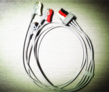 Kabel des Datex-(PRO1000) 10pin 3 des Kabel-ECG