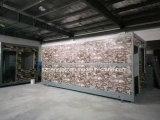 Большое сбывание новое - напечатайте складывая передвижную полуфабрикат/Prefab дом на машинке контейнера для пакгауза
