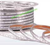 5050 luz de tira de SMD 230V/110V ETL LED