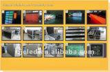 실내 발광 다이오드 표시 스크린 풀 컬러 (P5)