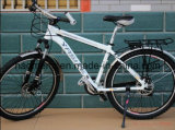 Fahrrad-Schutzvorrichtung/Schutzblech