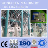 옥수수 Flour Mill Equipment (20t 50t 100t)