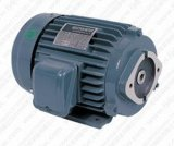 Bomba Use 3phase Y2 Motor Frame 56-315 (CE Approved)