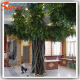 Evergreen Ornamental Large Fiberglass Artificial Ficus Tree