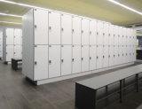 [فوميهوا] [هيغت] ضغطة نضيدة خزانة [جم] [هبل] خزانة لأنّ عمليّة بيع حارّ