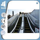 Rolltreppe des 800mm Aluminium-Jobstepps mit Cer-Bescheinigung