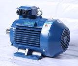 Hohe Leistungsfähigkeit Ye2 3 Phase Enegy-Einsparung Elektromotor