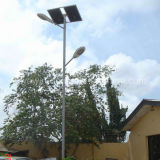 8m 9m 10m Light Pool 60W LED Lamp Solar Street Light