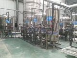 プールの水処理の自浄式フィルターのための15gオゾン発電機