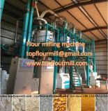50t Maize Flour Mill Machine Maize Mill 잠비아