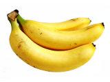 말린 바나나 추출 분말 또는 바나나 잎 추출