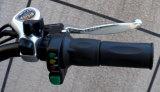 E-Bicicleta da bateria de lítio da cidade 180W~250W com frame da liga (TDE-003)