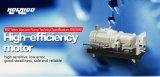 La haute performance a exécuté la pompe de vide sèche de vis (RSE180)