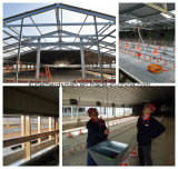 Vorfabriziertes Steel Poultry House Design und Construction