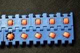 ローラーの適当なプラスチックコンベヤーベルトを集めるすべての方向