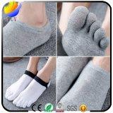 Calcetines cómodos respirables de los calcetines de la punta del color sólido cinco del algodón