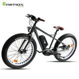 Samsungのリチウム電池が付いている山の電気自転車