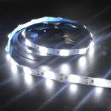 La tira impermeable de 12V LED presta para el rectángulo de la muestra/de iluminación