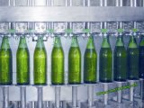 Máquina monobloque de coronación de relleno de la cerveza de la botella de cristal
