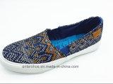Zapatos escotados vulcanizados de las mujeres de la manera (ET-LH160304W)