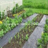 Reti nere della stuoia del Weed del coperchio al suolo della serra dei pp