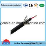 Câble électrique blindé engainé par PVC de fil d'acier