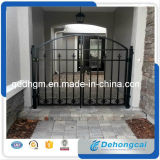 Projeto decorativo da porta do ferro feito da propriedade